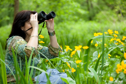 Enjoy more comfortable bird watching with Eyeshields