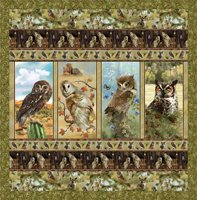 Owls of Wonder Quilt pattern