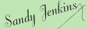 Sandy Jenkins Logo
