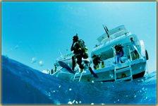 Couple taking scuba diving lessons