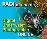 Digital Underwater Photography eLearning