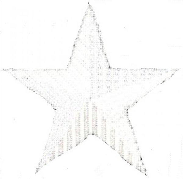 ASITJ3 White Star