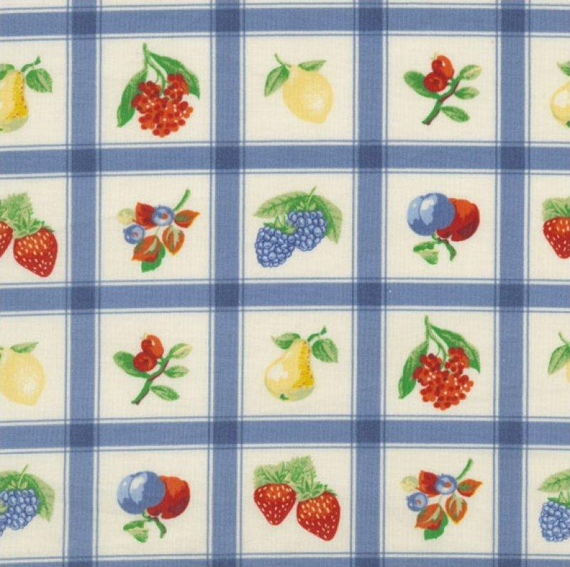 Momma's Apron Strings (Plaid & Fruit Pattern) - Blue