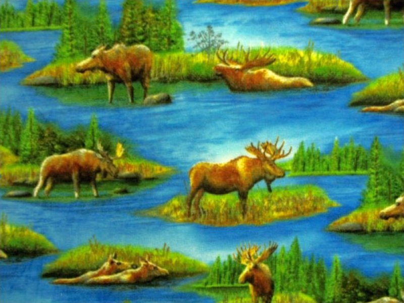 Scenic Moose Print