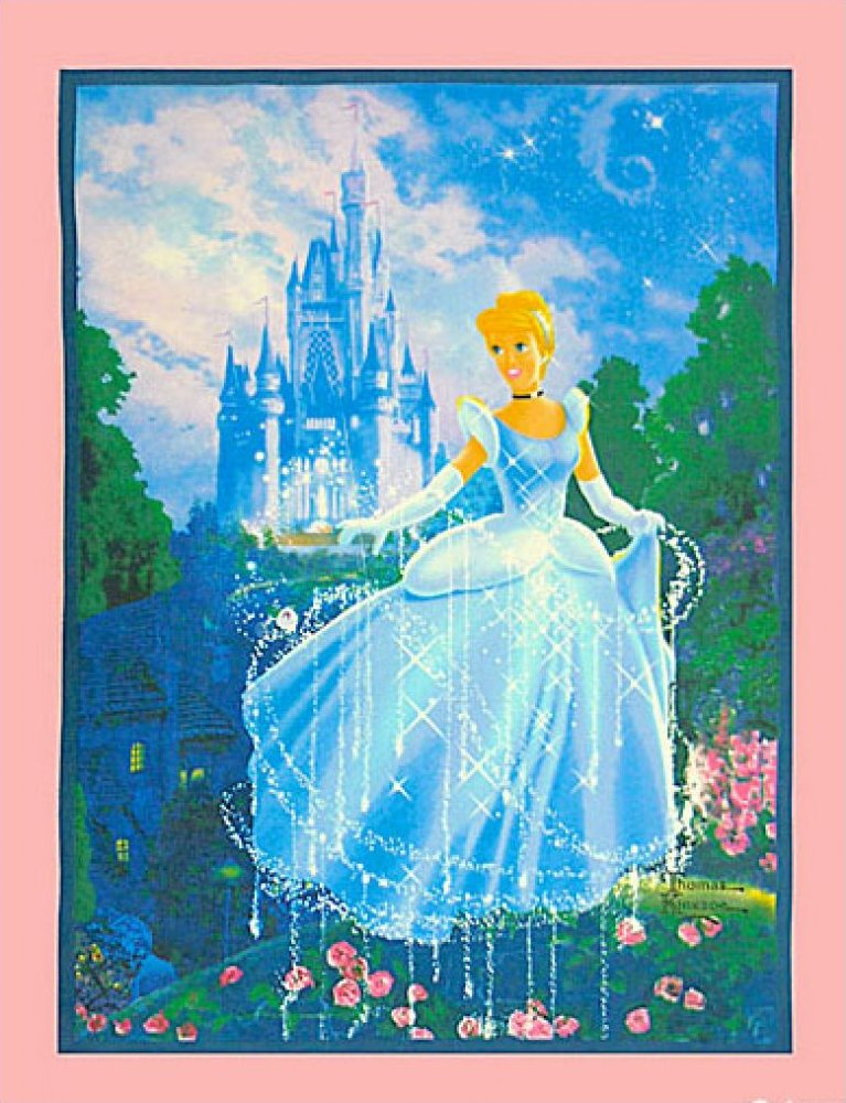 Cinderella Fleece Panel