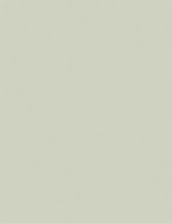 ColorWorks Solids - dove (110687)