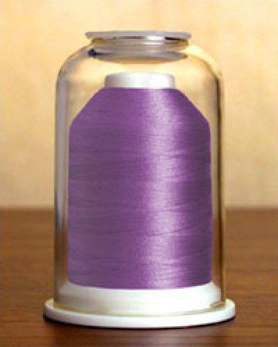 Purple Iris   1206