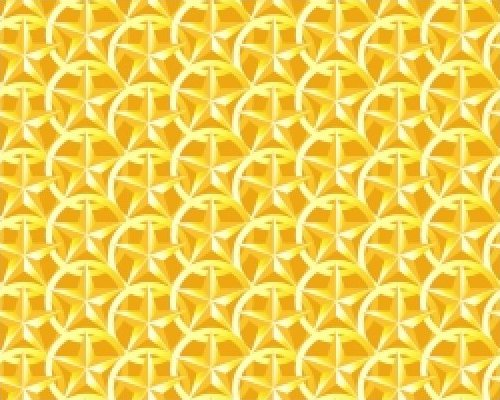 Star Conches-Yellow
