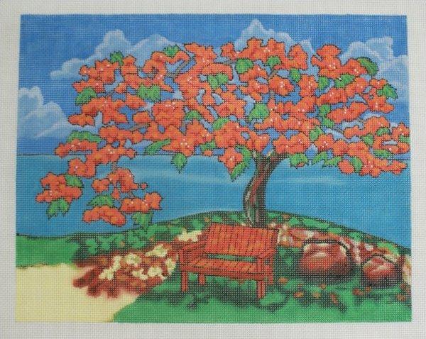 Royal Poinciana Tree PH 15