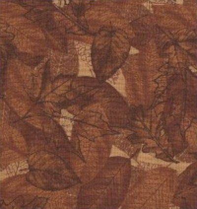 Nature Brown from Timeless Treasures