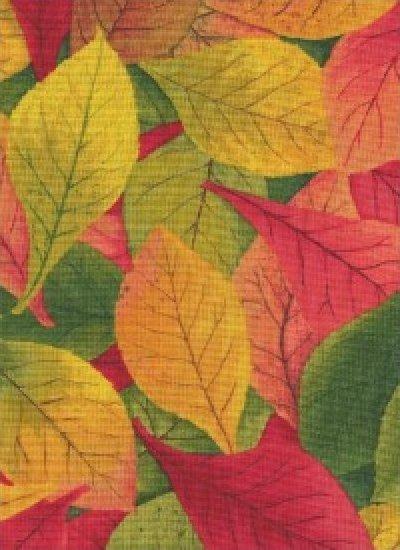 Fading into Fall by Demetria Hayward  & Yuko Hasegawa for RJR