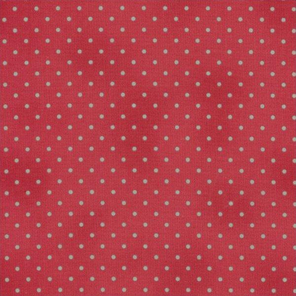Home Essentials Aqua Dots on Red