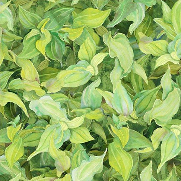 Blooming Springs Leaf - Light Green