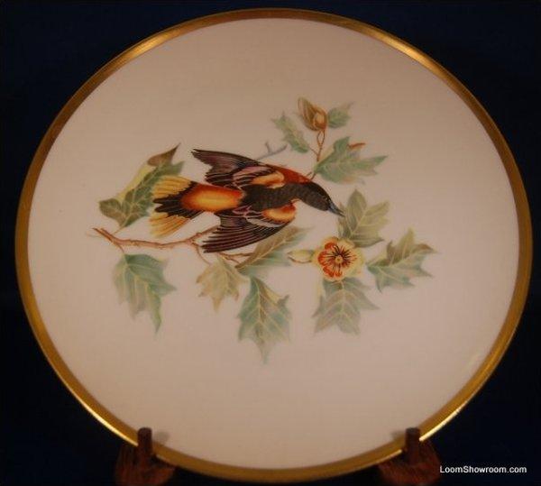 Audubon Hutschenreuther Gelb Bavaria Germany Pasco Baltimore Oriole Bird Painted German Porcelain Plate