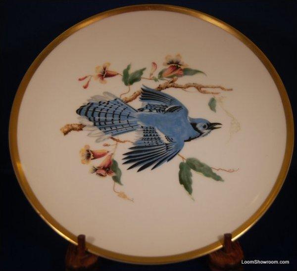Audubon Hutschenreuther Gelb Bavaria Germany Pasco Blue Jay Bird Painted German Porcelain Plate Box31D