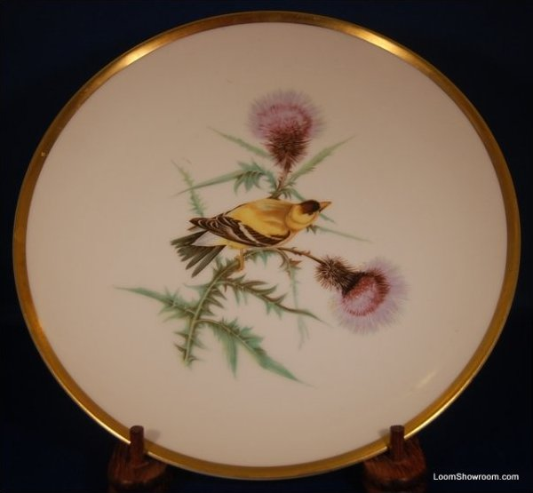 Audubon Hutschenreuther Gelb Bavaria Germany Pasco Gold Finch Bird Painted German Porcelain Plate