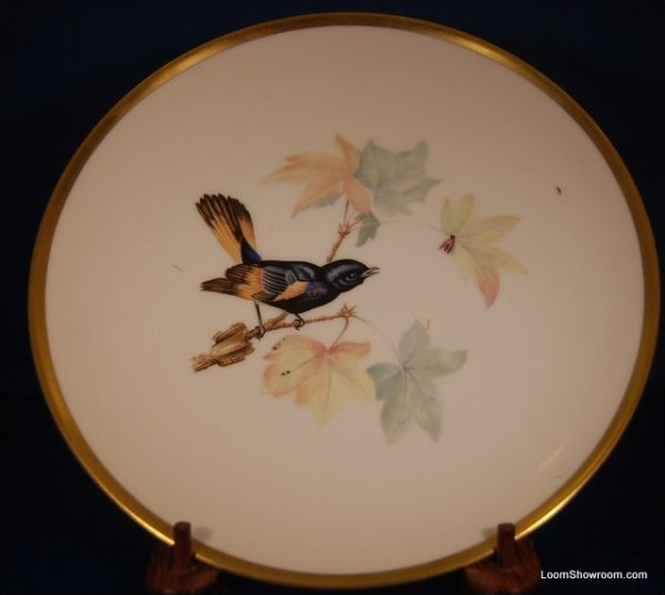 Audubon Hutschenreuther Gelb Bavaria Germany Pasco Redstart Bird Painted German Porcelain Plate