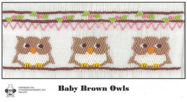 Crosseyed Cricket Baby Brown Owls