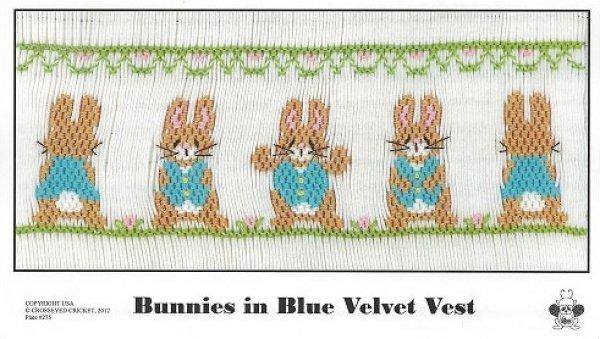 Crosseyed Cricket Bunnies in Blue Velvet Vests