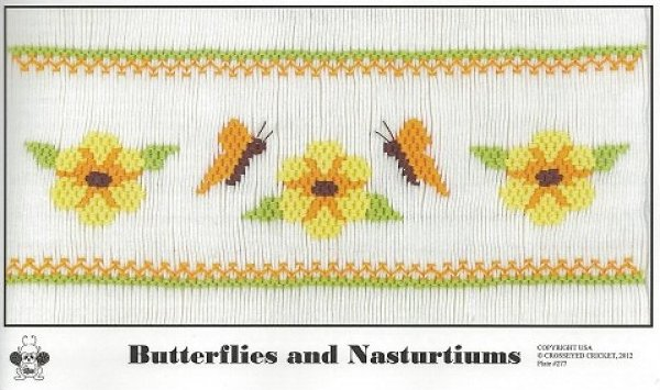 Crosseyed Cricket Butterflies and Nasturtiums