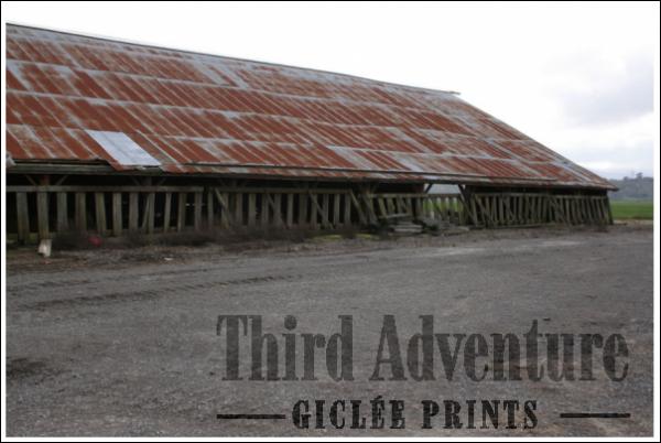 See Through Barn Giclée Print