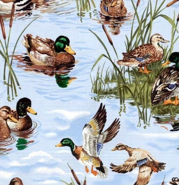 Blank Quilting - Birds of Feather-Pond - 6201