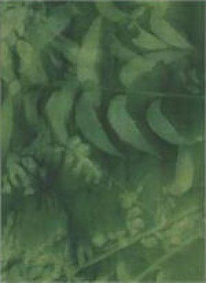 Sun Print - Emerald