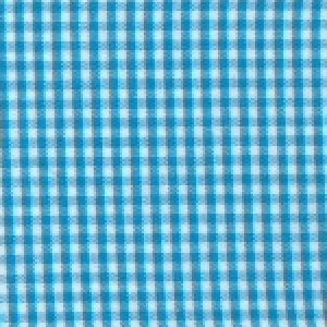 1/16 Inch Turquoise Gingham by Fabric Finders