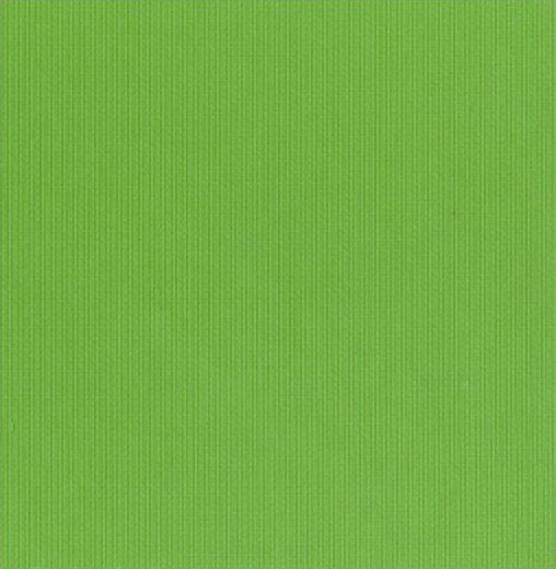 Fabric Finders Apple Pique