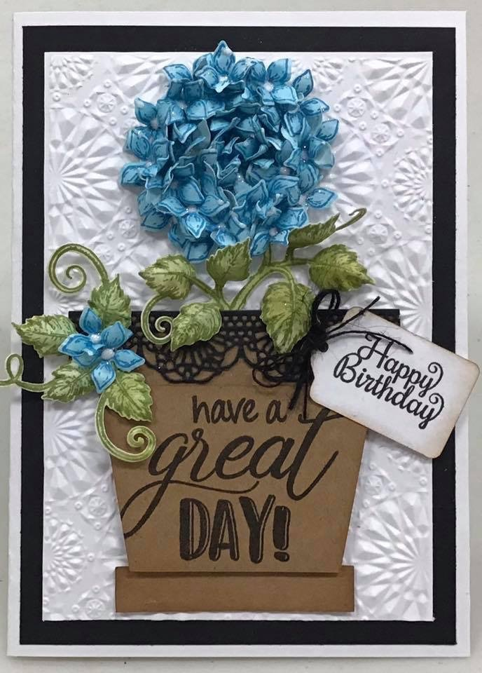 Happy Birthday Have a Great Day Card