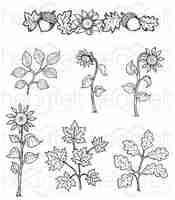 Heartfelt Creations Cling Rubber Stamp  and die Set-Sunflower Accents