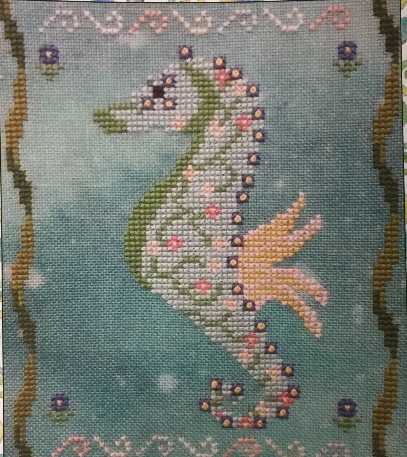 Seahorses of the Month - Flora May