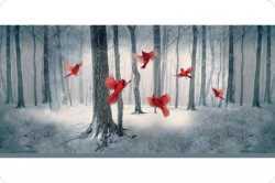 Hoffman Cardinal Digital Cuddle Panel 28 x 60