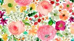 Daybreak Multi Floral