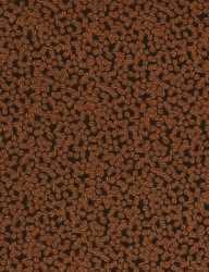 Pumpkin Spice Coffee Beans