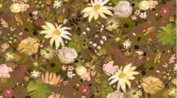 Woodland Fairytale Wildflowers