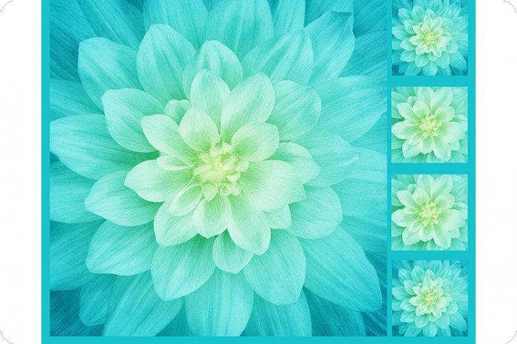 Hoffman Floral Digital Cuddle Panel Tidepool