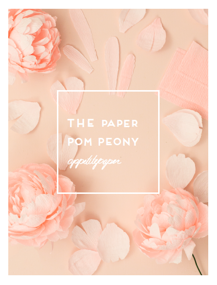 Pom Peony Paper Flower PDF Instructions