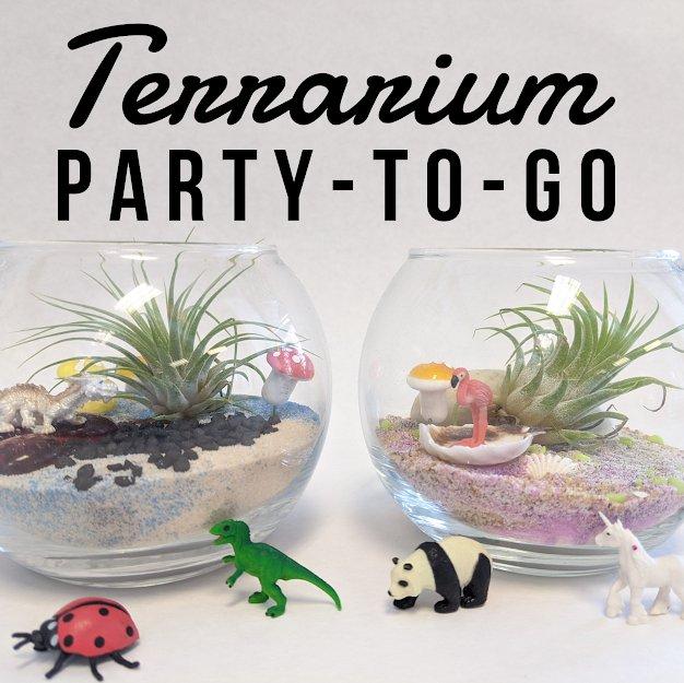 Terrarium Party-to-Go