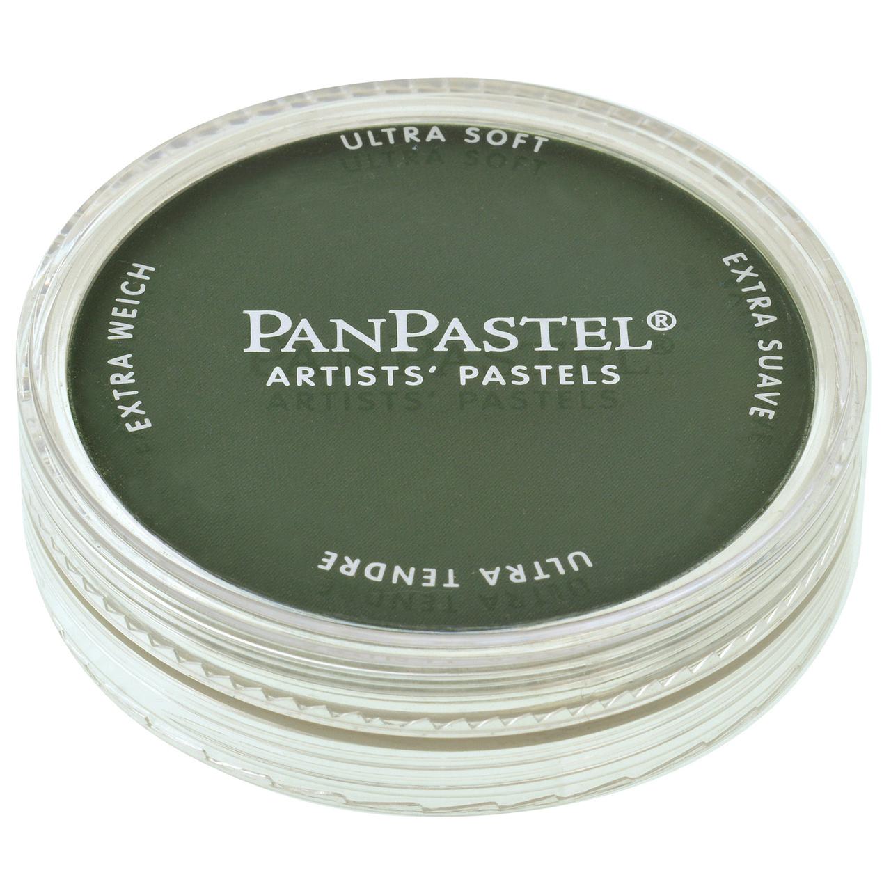 PANPASTEL 9ML XDRK PERM GREEN
