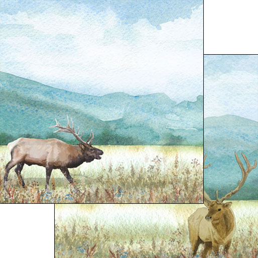 Elk Watercolor