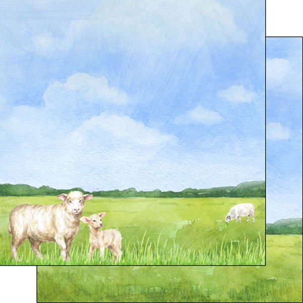 Sheep Watercolor Double Sided Paper 12x12