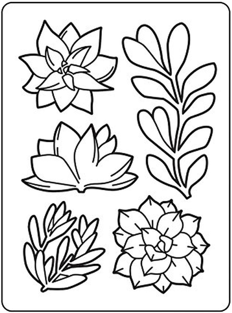 Darice Succulents Embossing Folder