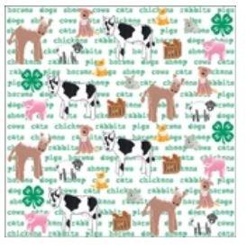 12x12 4H Animals