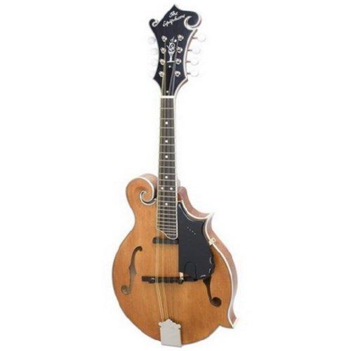 Epiphone F-Style Professional Mandolin