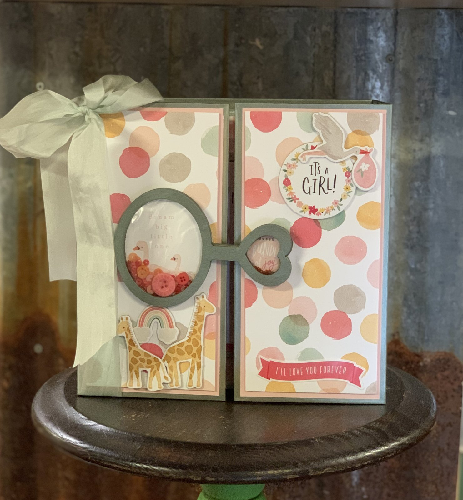 Welcome Baby Girl Album Kit