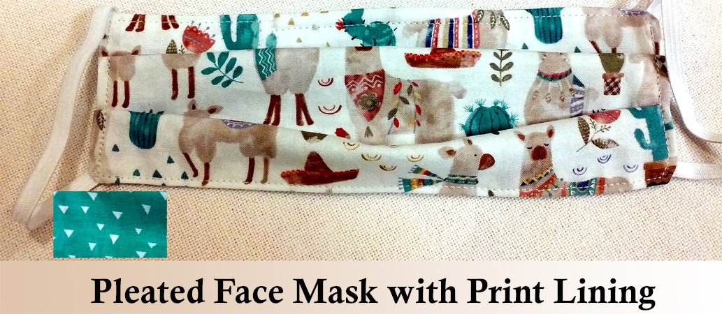 Pleated Face Mask 7-23-20