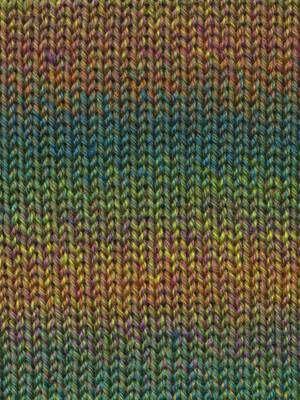 Queensland Collection Rainbow Beach
