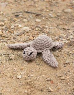 Kat the Turtle Kit