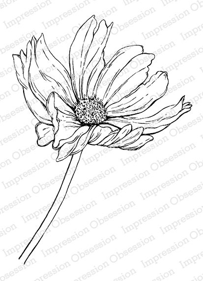 Impression Obsession Cling Stamp - Wispy Cosmo - E16440